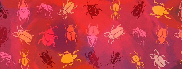 A pattern of different types of insects including beetles, ants, and mosquitoes